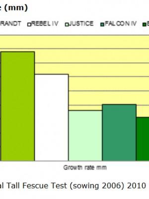Συγκριτικός πίνακας ποικιλιών χλοοτάπητα | More Green Έτοιμος χλοοτάπητας - γκαζόν