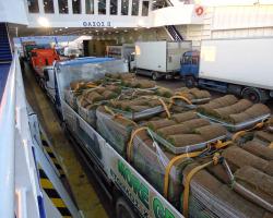 Μεταφορά χλοοτάπητα με το φορτηγό μας| More Green Έτοιμος χλοοτάπητας - γκαζόν