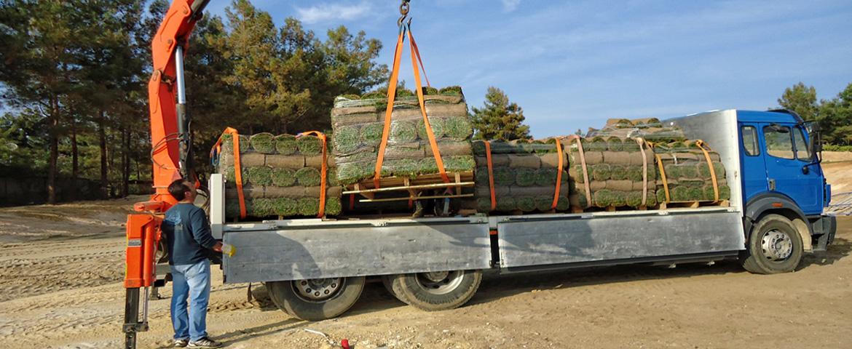 Φόρτωση παλετών χλοοτάπητα | More Green Έτοιμος χλοοτάπητας - γκαζόν