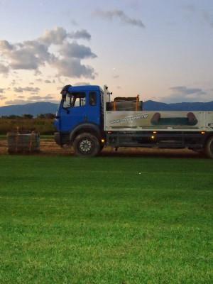 Το φορτηγό της εταιρίας μας | More Green Έτοιμος χλοοτάπητας - γκαζόν