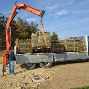 Φόρτωση χλοοτάπητα | More Green Έτοιμος χλοοτάπητας - γκαζόν